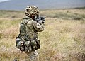 Soldier with 1RRF During Exercise Southern Warrior MOD 45156958.jpg