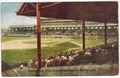 South Side Ball Park, Chicago, White Sox (front).tif