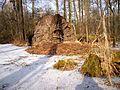 Spreewald im Winter - panoramio (1).jpg