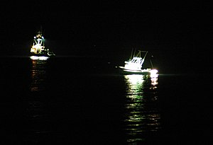 Squid boats night fishing off San Pedro, Los A...