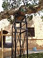 St. Mary's Church of Ayia Napa and the surrounding area with old trees - 14.JPG