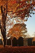 St Woolos Churchyard in Autumn.jpg