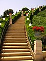 Stairway in Bahai World Center.jpg