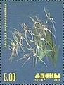 Stamp of Abkhazia - 2000 - Colnect 1004764 - Orchid.jpeg