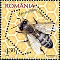 Stamps of Romania, 2010-04.jpg