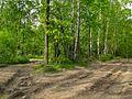 Starachowice, Poland - panoramio.jpg