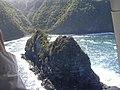 Starr-050307-0085-Schinus terebinthifolius-habitat-Keopuka-Maui (24646457381).jpg