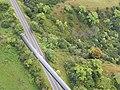 Starr-141014-2250-Caesalpinia decapetala-aerial view Hana Hwy-Kakipi Gulch Haiku-Maui (24879645109).jpg