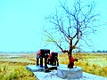Statue of Elephants in Nepal.jpg