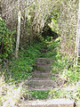 Steep steps on a public footpath - geograph.org.uk - 757274.jpg