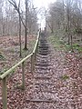 Steps in Manning's Wood - geograph.org.uk - 1754096.jpg