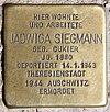 Stolperstein Carl-Schurz-Str 39 (Spand) Jadwiga Siegmann.jpg