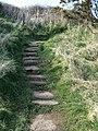 Stone stairway - geograph.org.uk - 1222489.jpg