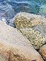 Stones sea.jpg
