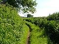 Strawberry Lane, Cobden - geograph.org.uk - 178681.jpg