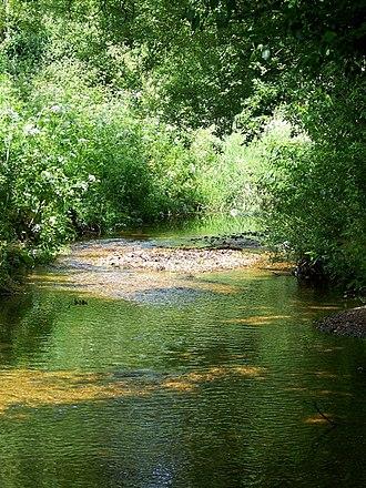 Sopley - Sopley Brook