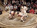 Sumo-Japan.jpg