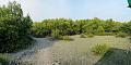 Sundarban Biodiversity and Interpretation Area - Taki - North 24 Parganas 2015-01-13 4665-4668.tif