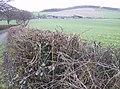 Sunwood Farm - geograph.org.uk - 356077.jpg