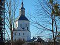 Suponevo, Bryanskaya oblast', Russia - panoramio (33).jpg