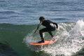 Surffari.jpg