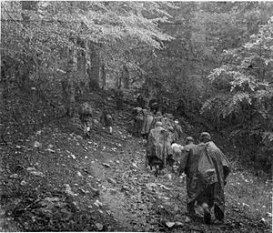 Case Black - Partisan column during the Battle of the Sutjeska