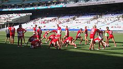 Sydney Swans warming up 2013.jpg