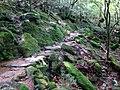 Taikoiwa Trail (32336324195).jpg