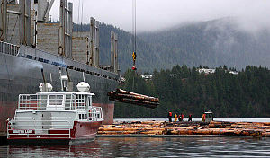 """Santa Pacifica"" taking on logs in P..."
