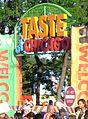 Taste Chicago.jpg
