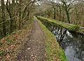 Tavistock Canal aqueduct.jpg