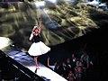 Taylor Swift IMG 0583 (9927051213).jpg