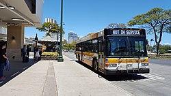 TheBus (Honolulu) 20160610 132958.jpg