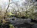 The Ballinderry River at Wellbrook Beetling Mill, Cookstown - geograph.org.uk - 1823961.jpg