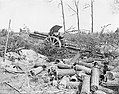 The Hundred Days Offensive, August-november 1918 Q6929.jpg