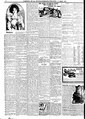 The New Orleans Bee 1900 March 0184.pdf
