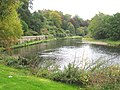 The River Wye at The Weir Gardens - geograph.org.uk - 1421693.jpg