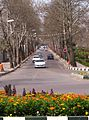 The Street - panoramio.jpg