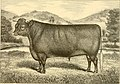 The breeds of live stock, and the principles of heredity (1887) (14594857267).jpg