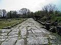 The cardo, Ancient Dion (7098473729).jpg