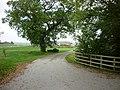 The way to Wynn Cottage Farm (geograph 2112251).jpg