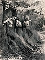 Three naked men are tied to trees with a bonfire set alight Wellcome V0041721.jpg