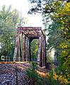 Through Truss Railroad Bridge over Neches River, west of US 59 1124111630 (6402573131).jpg