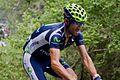 Tour de France 2012, ritwinnaar valverde (14683266488).jpg
