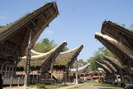 An avenue of Tongkonan houses in a Torajan village, South Sulawesi Traditional Toraja House.JPG