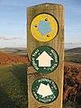 Trail marker post - geograph.org.uk - 640893.jpg