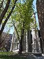 Transept sud de l-Eglise-de-Saint-Jacques 25.jpg
