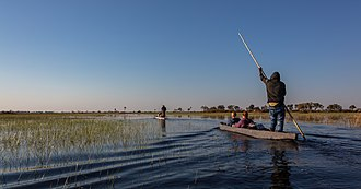 Okavango Delta - Hambukushu guide poles his makoro on delta floodwaters