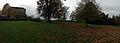 Trees and foliage at Petworth Park.jpg