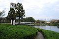 Tsukuba park II.jpg